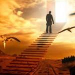 Зачем нужно понимать свое предназначение и искать смысл жизни