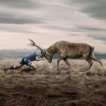 Жизнь – борьба? Как выйти из противостояния
