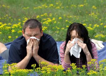 Причины возникновения аллергии: На что мы раздражаемся?