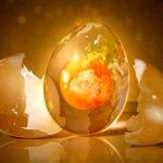 Психическая энергия: Как сохранить энергию жизни